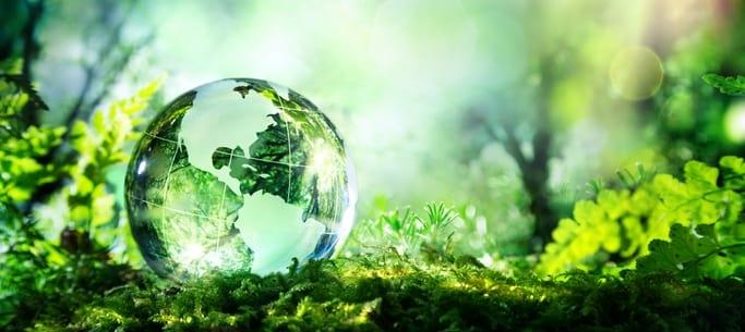 e-rechnung, xrechnung, nachhaltigkeit