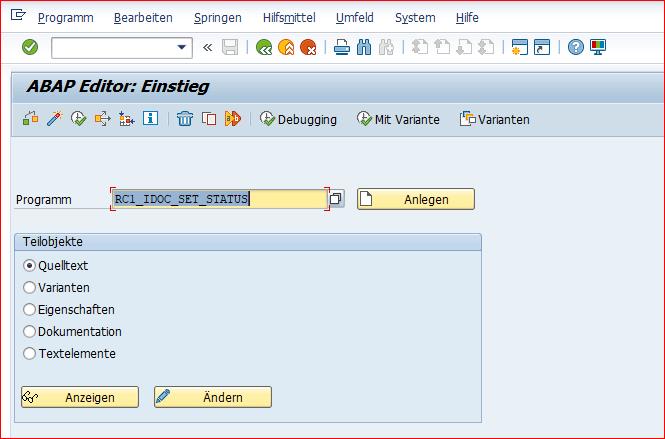 Programm: RC1_IDOC_SET_STATUS ausführen